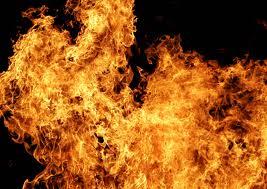 За сутки Запорожская область горела пять раз