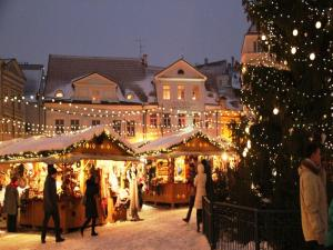 Как превратить серую запорожскую зиму в новогоднюю сказку?