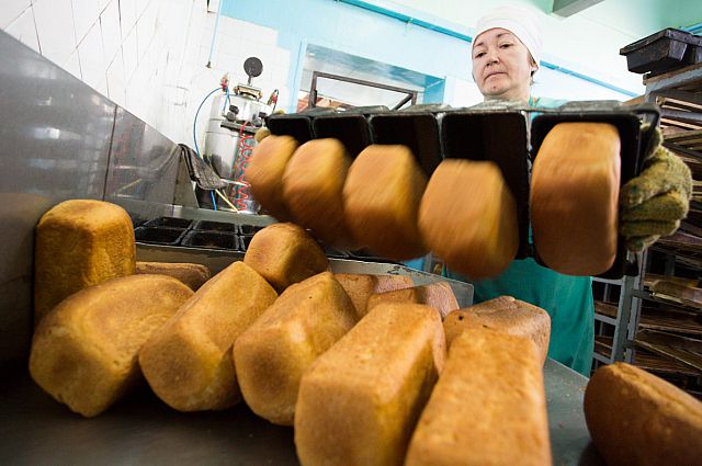 Жители Запорожья за день съедают 210 тонн хлеба: стало известно, хватит ли зерна на всех в этом году