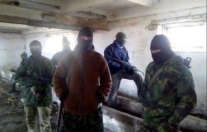 Под Мариуполем «Зверобой» устроил фейерверк из боеприпасов террористов