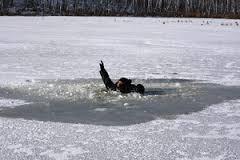 В запорожском парке под лед провалилась семья