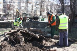В Запорожье опять борются с последствиями стихии