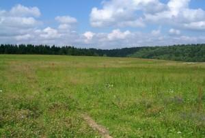 В Запорожской области резко выросло количество заявлений от участников АТО на земельные участки