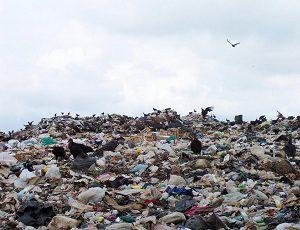 Запорожский полигон ТБО отказывается принимать мусор со Львова
