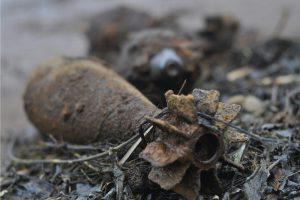 Запорожские огородники все чаще нуждаются в помощи пиротехников