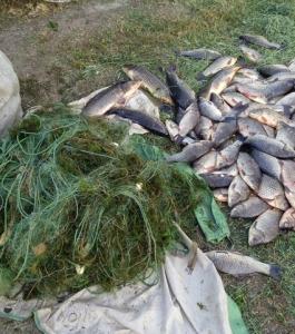 Рыбоохрана Запорожья поймала браконьеров с серьезным уловом
