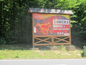 В Запорожской области на территории лесоохотничьего хозяйства произошел пожар: огнем охватило 1,5 гектара травы