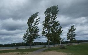По Запорожской области объявлено штормовое предупреждение