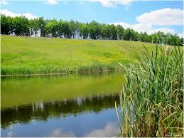 Арендовать пруды и реки в Украине станет дешевле