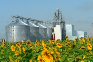 Европа обещает миллиард евро инвестиций аграриям Украины