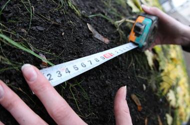В запорожском Геокадастре у военных требовали до 500 долларов за гектар земли