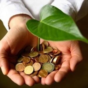 75 миллионов гривен заплатил запорожский бизнес за право вмешиваться в экологию региона
