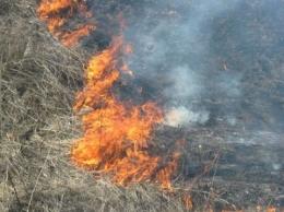 В Запорожской области на выходные прогнозируют максимальный класс пожарной опасности