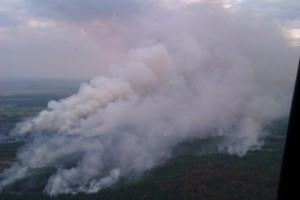 Пожар в чернобыльской зоне отчуждения продолжается