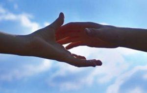 Запорожские волонтеры просят помощи у горожан