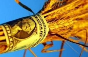Мошенник продал несуществующее зерно на 120 млн грн