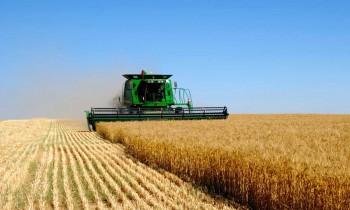 Запорожским аграриям выделят одиннадцать миллионов поддержки