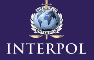 Украина подключилась к базам данных Интерпола