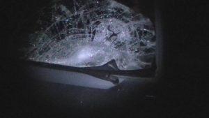 В Запорожье водитель сбил женщину и бросил ее на дороге