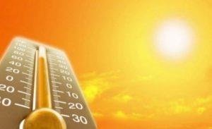 Спасатели предупреждают: сегодня, завтра и в пятницу область может загореться