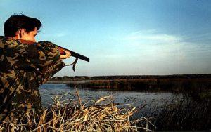 Бердянские чиновники разрешили охотиться по средам и выходным