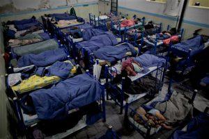 Городская власть займется приютом для бездомных в следующем году