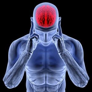 Столичные медики проверят активность мозга бердянцев