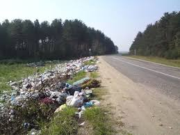 На мусор на запорожских трассах потратили более миллиона