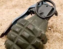 Житель Запорожской области хранил дома гранату Ф-1