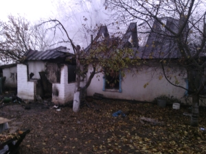 В Запорожской области огонь охватил весь жилой дом