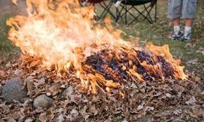 За сжигание листвы запорожцам грозит крупный штраф