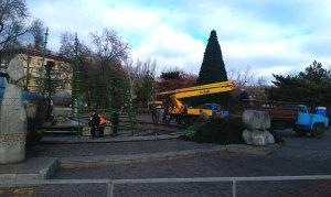 Как коммунальщики устанавливают главное новогоднее дерево Запорожья