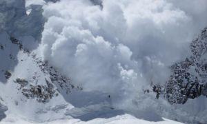 В Альпах лавина накрыла группу школьников, есть погибшие