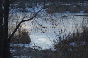 В Днепропетровске дети ушли под лед