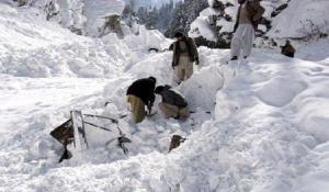 Пять человек погибли в результате схода лавины в Канаде