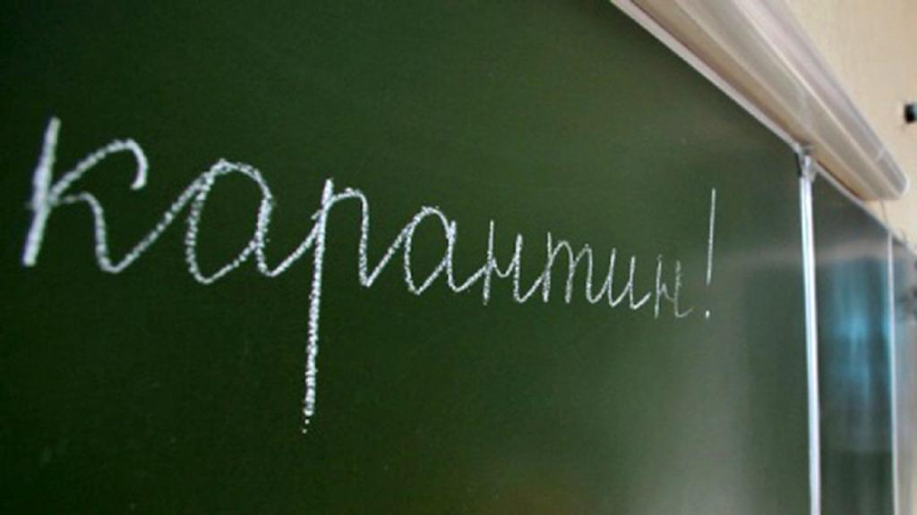 В школах Бердянска карантин продлили до 1 февраля