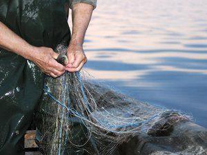 Одно из министерств ищет в Запорожской области руководителей для рыбоохранного патруля