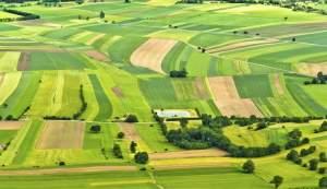 В Запорожской области за самовольный захват земель горе-фермеры заплатили 107 тысяч гривен