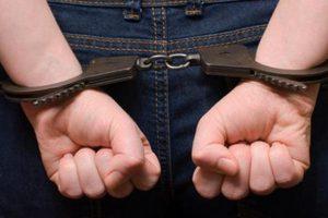 У жителя Вольнянска украли бензопилу и мобильный телефон
