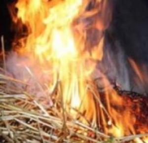 В Ореховском районе горела солома