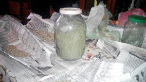 Полицейские изъяли «марихуаны» на 200 тысяч гривен в Бердянском районе