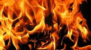 Более ста спасателей тушили пламя на территории области