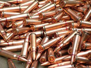 Операция «Оружие и взрывчатка»: Запорожские полицейские изъяли почти 90 патронов