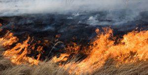 В Днепровском районе произошел масштабный пожар