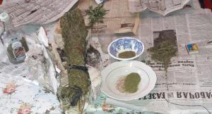 Двое жителей Бердянска вырастили марихуаны на полмиллиона гривен