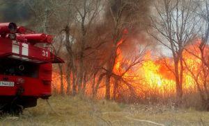 В Энергодаре второй раз за неделю горел лес