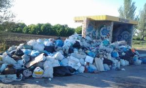 Вместо ямочного ремонта дорожники области вынуждены убирать мусор