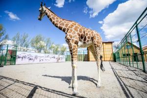 Бердянский зоопарк провел день открытых дверей для СМИ