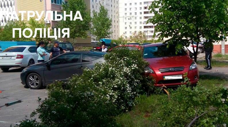 Запорожанка на КИА перепутала педали, врезалась в авто и застряла в кустах