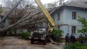 Коммунальщики ликвидируют последствия ночного урагана